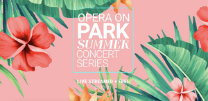 Opera Orlando Brings its Opera on Park Summer Concert Series Online This Year