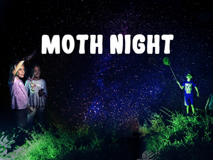 Celebrate National Moth Week With the Staten Island Museum
