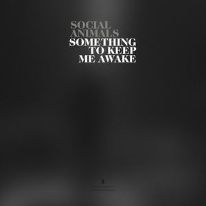 Social Animals Release Single 'Something to Keep Me Awake'
