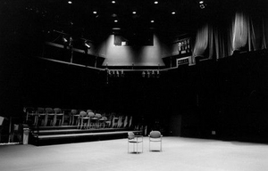 BWW Blog: A Summer Without Theatre - How I've Survived (Barely)