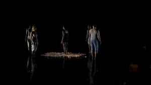 University of Florida Hosts Virtual SWAMP DANCE FEST! on Zoom