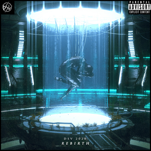 UK Label DSV Audio Reveals VA 'Rebirth' Compilation