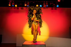 BWW Interview: Tymisha Harris in JOSEPHINE: A BURLESQUE CABARET DREAM PLAY, Outdoors at The Morris Museum on 9/17 and 9/18