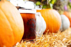 Morgan's Pier Presents FALL FEST On The Waterfront With Pumpkin Carving, Fall Decor, New Menus