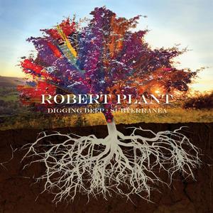Robert Plant Anthology 'Digging Deep: Subterranea' Out Today