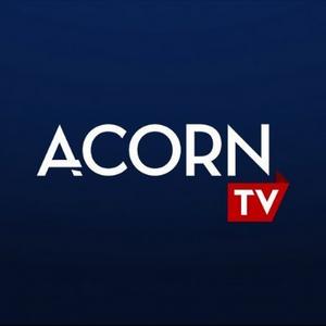 A SUITABLE BOY Will Make U.S. Premiere on Acorn TV