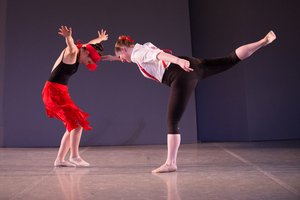 North Shore Civic Ballet Needs Your Treasures and Volunteers for Annual Online Holiday Auction