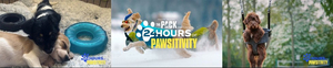 Amazon's THE PACK Presents 24 Hours of Pawsitivity