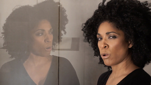 BWW Review: LONG BEACH OPERA'S SONGBOOK at Home Computer Screens