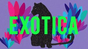Purple Disco Machine Releases New Single 'Exotica'