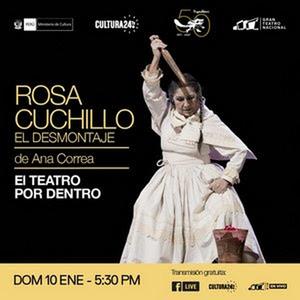 Gran Teatro Nacional Postpones ROSA CUCHILLO, EL DESMONTAJE