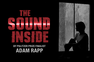 Singapore Repertory Theatre to Present THE SOUND INSIDE