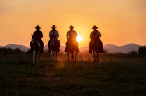 WILD WEST ADVENTURE PARTY Comes to  Adelaide Fringe