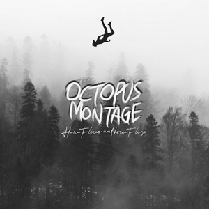 Octopus Montage Releases New Album 'How To Live and How To Lose'