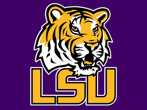LSU School of Theatre Announces Bachelor of Fine Arts in Film and Television