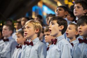 Ragazzi Boys Chorus Streams Concert JOY, AWE, AND WONDER