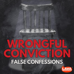 Laura Nirider Hosts 'Wrongful Conviction' Experts to Discuss Bills to Ban Deception During Police Interrogations