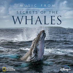 Music From SECRETS OF THE WHALES Available Today