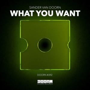 Sander van Doorn Releases New Driving Hit Single 'What You Want'
