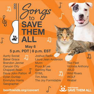Emmylou Harris, Amanda Seyfried & More to Appear in 'Songs to Save Them All'