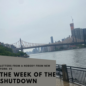 Student Blog: Letters from a Nobody in New York #5: Snapshots of The Week of the Shutdown