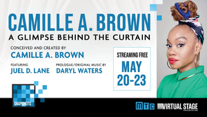 CAMILLE A. BROWN - A GLIMPSE BEHIND THE CURTAIN Next Up on MTC's Snapshot Series