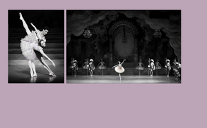 THE NUTCRACKER Will Be Performed by the Boston Ballet This November