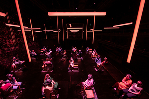 BLINDNESS to End its Run at the Daryl Roth Theatre on July 25