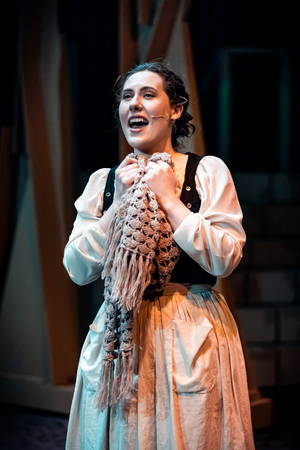 BWW Review: INTO THE WOODS At Harlequin Musical Theatre