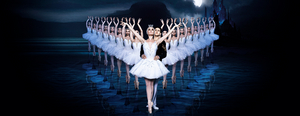 The Russian Ballet Theatre Will Bring SWAN LAKE to Colorado Springs in March