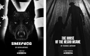 Contemporary American Theatre Festival Announces PlaycastPlus