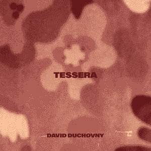 David Duchovny Releases New Single 'Tessera'