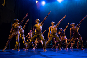 The Auditorium Theatre Presents Deeply Rooted Dance Theater, October 23