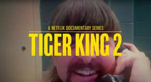 Netflix Announces TIGER KING 2 & More New True-Crime Documentaries