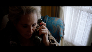 BWW Review: OPERA PHILA'S LA VOIX HUMAINE at Home Computer Screens