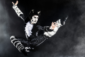 BWW Review: CATS at Orpheum Theater