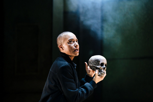 BWW Review: HAMLET, Young Vic