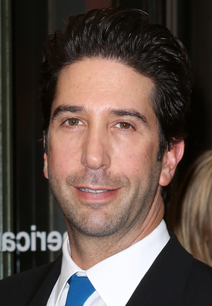 David Schwimmer and Alexander Zeldin to Appear on Lookingglass Theatre Company's Podcast