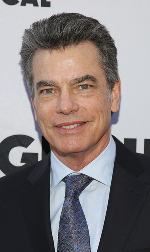 BWW Interview: Peter Gallagher Talks Starring in PALM SPRINGS on Hulu