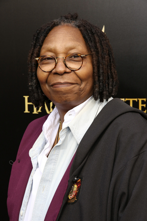Whoopi Goldberg, Josh Gad, Eric Idle & More Join THE PRINCESS BRIDE  Virtual Fundraiser For the Democratic Party of Wisconsin