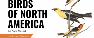 BWW Review: BIRDS OF NORTH AMERICA at Thrown Stone Theatre Company