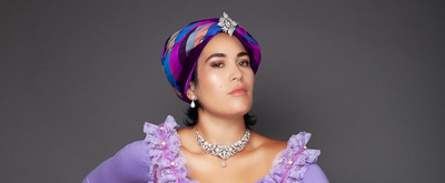 BWW Previews: ERMELINDA at ODC Theater