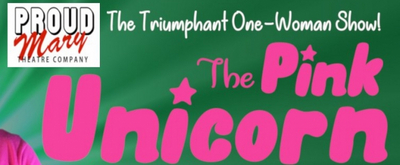 BWW Interview: Anne Tromsness, Director of THE PINK UNICORN at Proud Mary Theatre Company