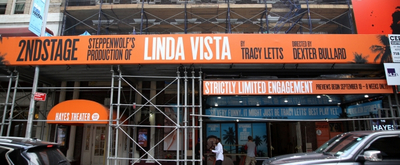 BWW TV: On the Red Carpet for Opening Night of LINDA VISTA