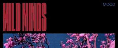 Mild Minds Unveils New Single 'WALLS' and Announces New Album MOOD