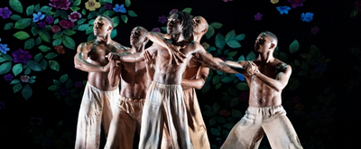 BWW Review: Alvin Ailey American Dance Theater Salutes The Ailey School with Tremendous Dancing