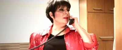 VIDEO: Christine Pedi Stars as Liza Minnelli in 'The Lost Screen Tests'