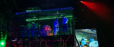 BWW Review: MAGNOLIA  at Teatr Wspolczesny Wroclaw, Frog Rain of Emotions