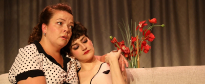 BWW Review: From Farcical to Sombre in PERFECT ARRANGEMENT at Fells Point Corner Theatre