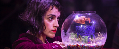 BWW Review: AMELIE THE MUSICAL, Nuffield Southampton Theatres